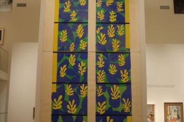 PRO Vittoriano Matisse Bonnard mostra 310107 016