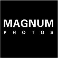 magnum 200 x 200